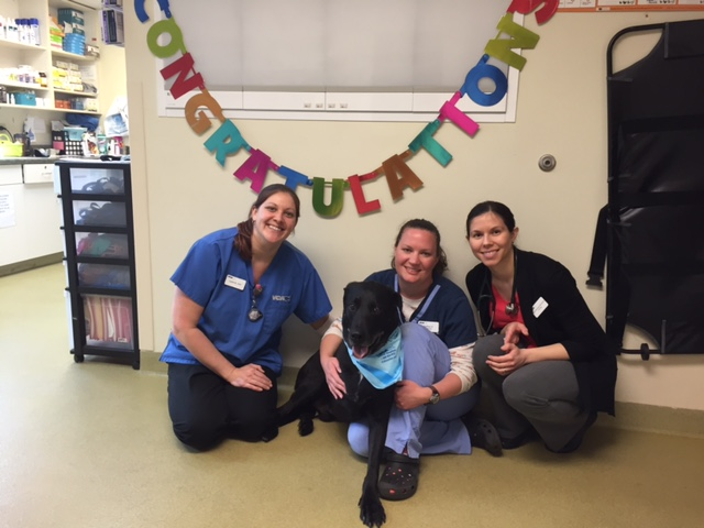 Otis and his oncology team celebrate his 4th and final chemo!!!!