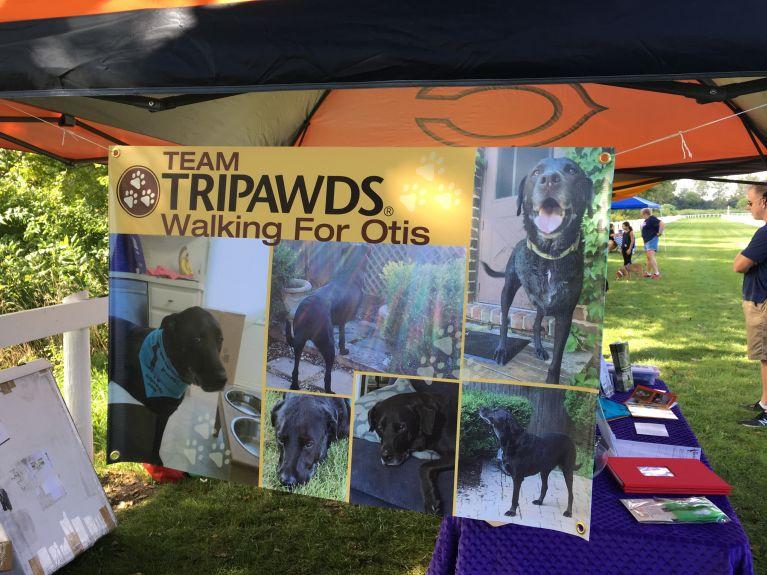 Thank you Team Tripawds!